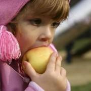 Сколько калорий ребенок должен съедать в день?